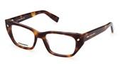 Acheter ou agrandir l'image du modèle DSquared2 Eyewear DQ5316-052.